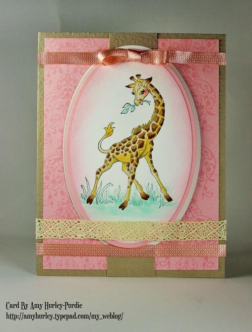 Gemma giraffe